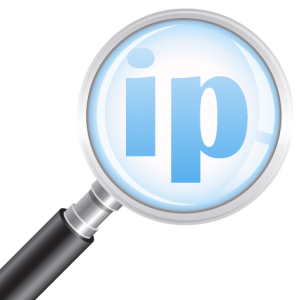 what's my ip logo